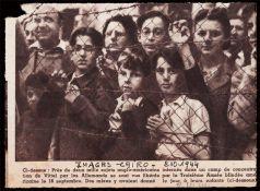 Wyzwolenie więźniów z Vittel 8 października 1944 r. W pierwszym rzędzie w środku Piotruś Miller, wnuczek Tamary i Mojżesza Schorrów.